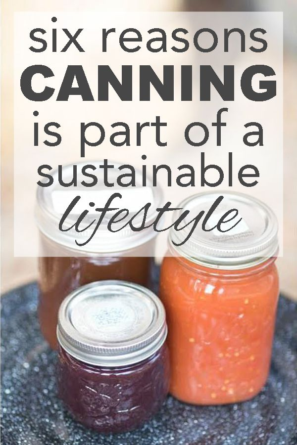 six reasons canning is part of a sustainable lifestyle from www.goingzerowaste.com