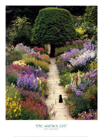 colorful garden & sculpted tree  // Great Gardens & Ideas //