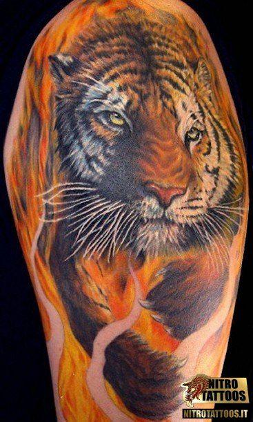tatuaggio tigre braccio #tatuaggi #tatuaggio #tattoos #tattoo #nitrotattoos