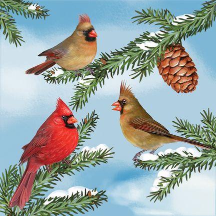 Cardinals in Winter Rosiland Solomon