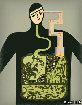 The Human Body as Ecosystem: A Way to Revolutionize Medicine