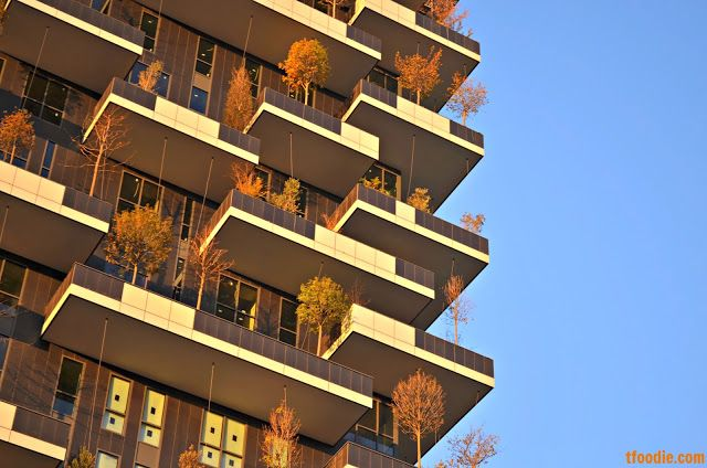The traveling foodie: Vertical Forest