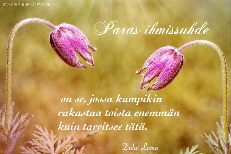 Dalai Lamalla on ollut suuri vaikutus maailman henkisyyteen. Tässä muutamia Dalai Laman lausumia viisaita sanoja.