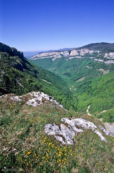 slides/combelaval_saintjeanenroyans_03.jpg falaise, montagne, Parc du Vercors, Parc Naturel, route, Royans Vercors, site classé, vertical Combe-Laval - Saint-Jean-en-Royans 03