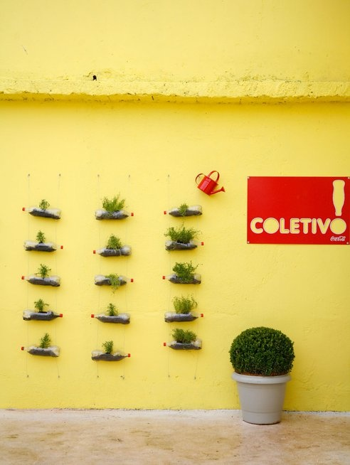 Herb garden on the wall using old plastic bottles.