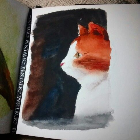 Gato, sketch rápido em aquarela no sketchbook. Cat, Quick sketch in watercolor. #cat #gato #instaart #aquarela #watercolour #watercolor #sketchbook #pentalic #waterbrush #winsorandnewton