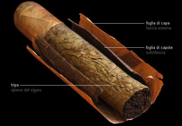 Fincato La Casa del Habano a Roma - prodotti: Sigari cubani - Composizione di un habano