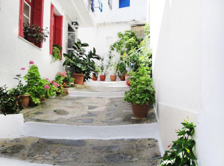 Flowery street