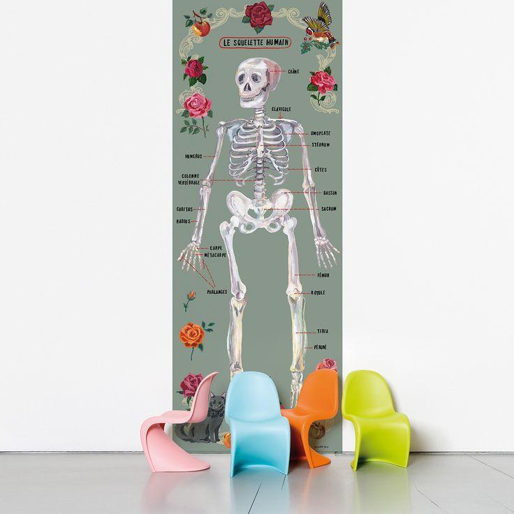 Tapeta samoprzylepna Le Squelette Humain (Ludzki szkielet w języku francuskim) ma zapach struganych ołówków i przypomina drewniane ławki uczniów z dawnych czasów. Jest nowoczesnym i oryginalnym rozwiązaniem, aby wyposażyć twoje ściany reprezentacją ciała ludzkiego z uwzględnieniem (w języku francuskim) każdej kości: zupełnie jak w szkole! Dostępna w kolorze szarym i różowym. Idealna do sypialni, łazienki, kuchni, a przede wszystkim do pokoików dzieci, gdzie pomoże im nauczyć się anatomii…