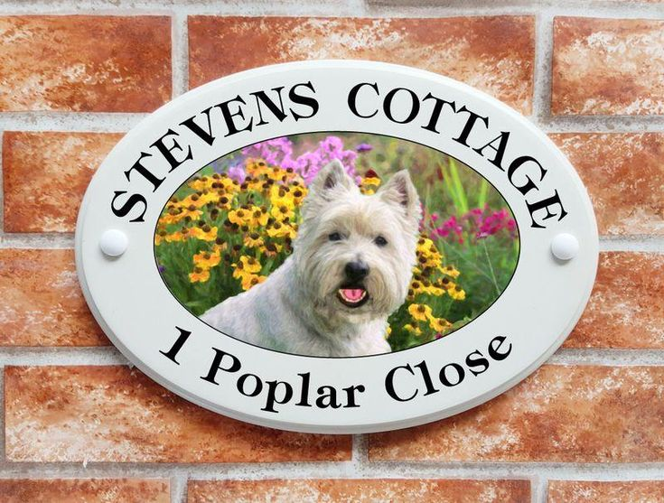 West Highland Terrier dog picture house address sign