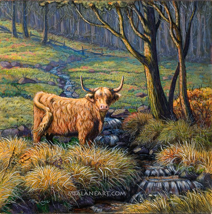 Revisiting the Highland -original by Mia Lane -Highland Cow