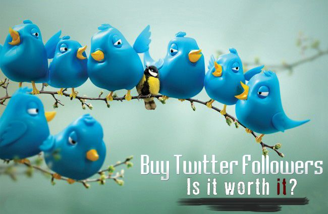 Is it really worth it to buy twitter followers?  All the story behind buying twitter followers.