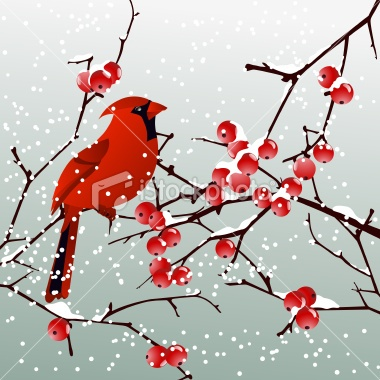 Red Cardinal with Winter Background Royalty Free Stock Vector Art Illustration