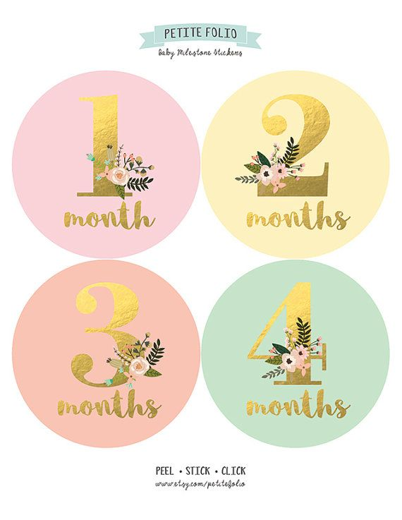 Baby Girl Monthly Sticker Monthly Baby Sticker Girl by PetiteFolio