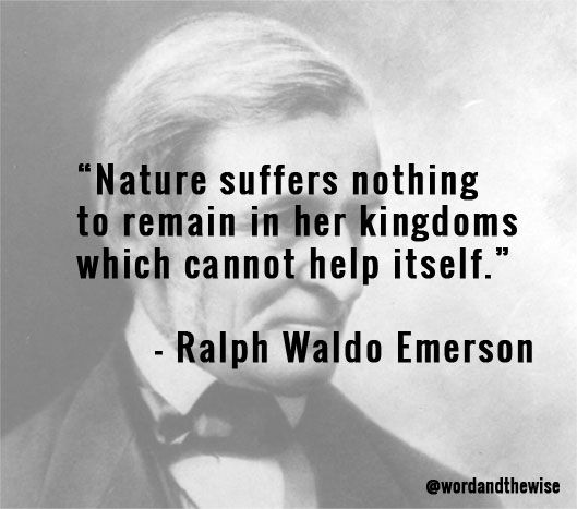 themes individualism ralph waldo emerson s self reliance This video analyzes ralph waldo emerson's essay 'self-reliance' for characteristics of transcendental ideas, including individualism, nonconformity, and intuition.