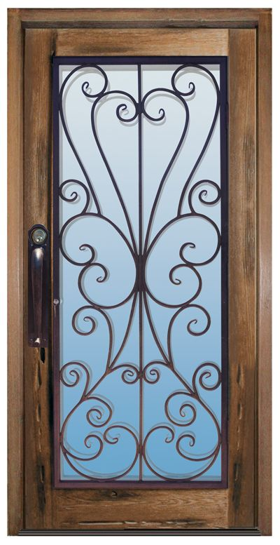 Would be great to find a wrought iron screen door to go on full light front door.