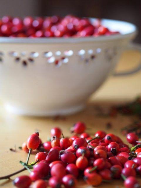 Keramická dílna Hliněnka: Šípková marmeláda