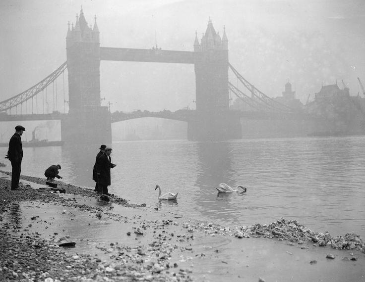 Foggy-London.