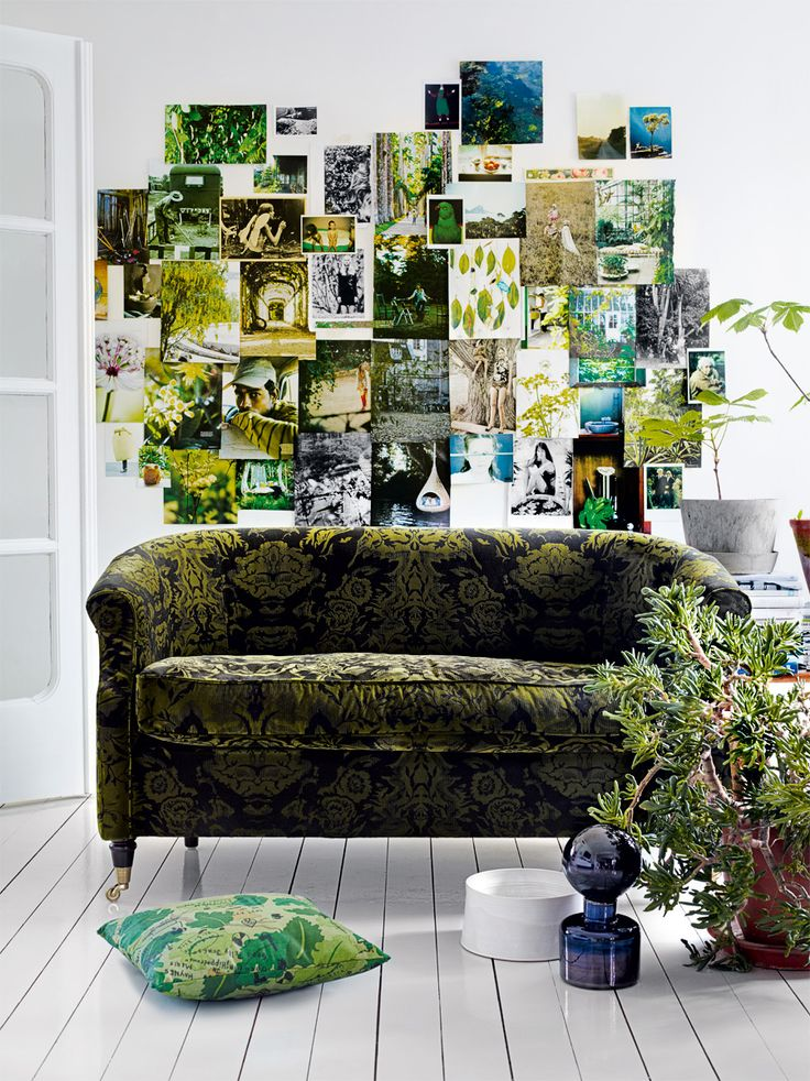 Lush backdrop <3Wall Collage, Ideas, Green Interiors, Couch, Green Wall, Colors, Photos Collage, Living Room, Photos Wall