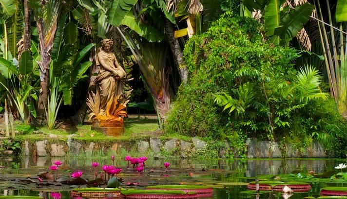 Rio de Janeiro, Brasil: Um passeio pelo Jardim Botânico pode render belas imagens -  Foto: Foto do leitor Eduardo Albuquerque / Eu-Repórter/O Globo.: Rendering Belas, Bela Images, Belas Imagens