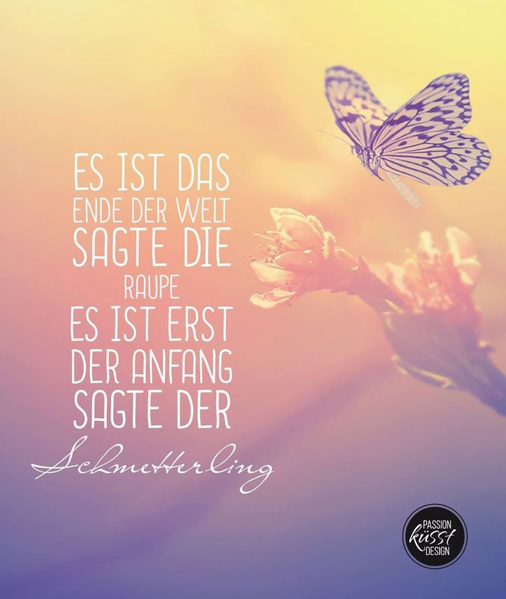 Es ist das Ende der Welt sagte die Raupe, es ist erst der Anfang sagte der Schmetterling.