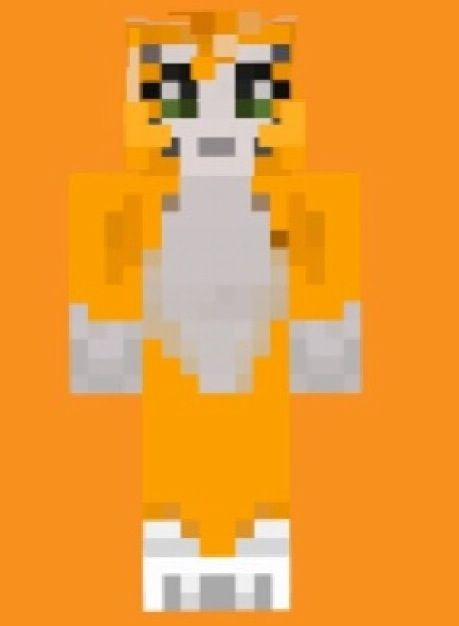 Stampy Cats Skin Minecraft Cat Skins Cool
