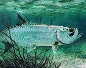 "Tarpon Fish, Giclee Canvas Print 12"" X 24"" Sport Fishing Art Lawrence Dyer Trophy Angler Fish"
