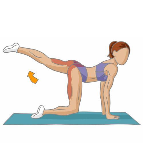 Réalisez des extensions de jambe