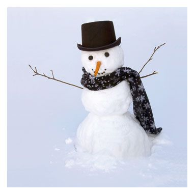 winter does not come equipped without a snowman!!