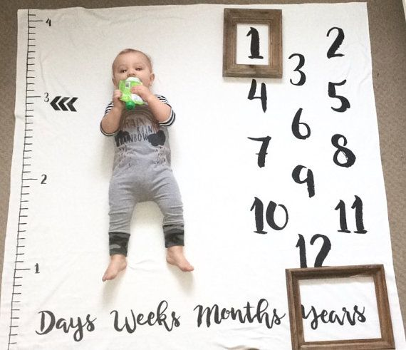NEW Age Growth Baby Monthly milestones anniversary by DotBoxed