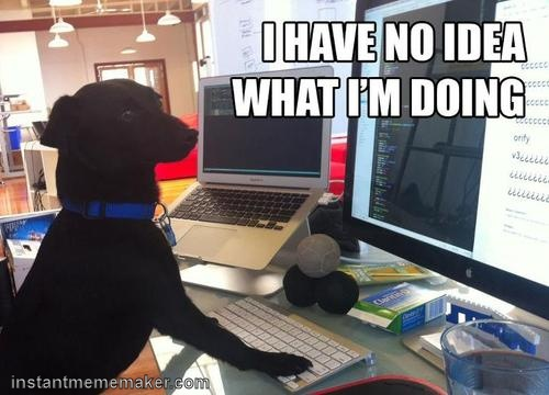 6deee9f70156320c810bd4e7db554d3d meme maker animal memes 78 best animal memes images on pinterest animals, animal memes,Anteater Meme Generator