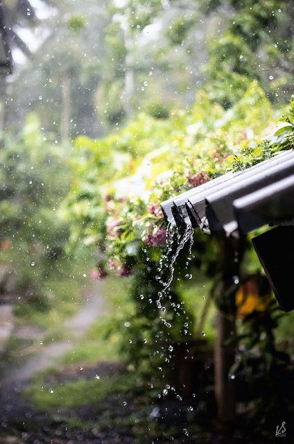 I love to hear rain falling on a tin roof...