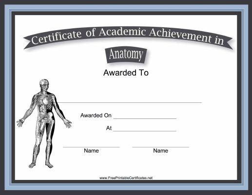 Best 25+ Printable certificates ideas on Pinterest Free - printable achievement certificates