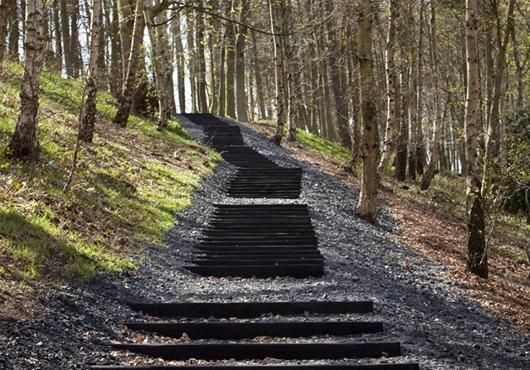 Seventy-one Steps by David Nash