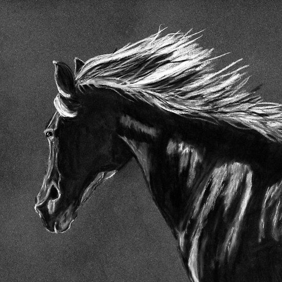 Black and white charcoal horse by Tracey Everington of Tracey Lee Art Designs. Available on 55 products
