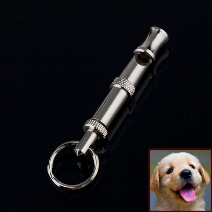 1 Have Dog Behavior Problems Learn About Dog Behavior Towards Humans And Clicker Training Dogs Fetch Dog Behavior Problems Dog Clicker Training Dog Behavior