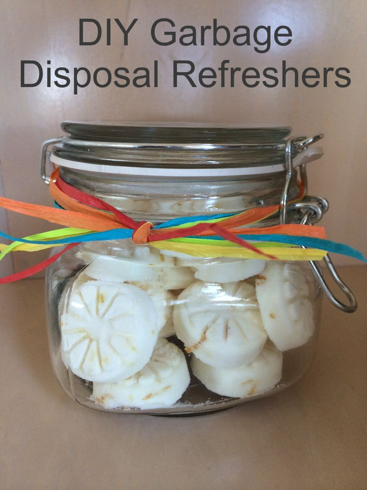 DIY Garbage Disposal Refreshers - Easy recipe with just 5 ingredients. Take 10 minutes to make!