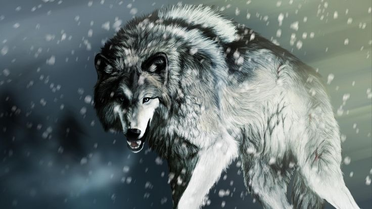 2016-12-12 - Free screensaver angry wolf image - #59792