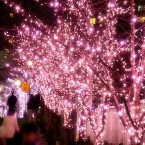 """目黒川に""""冬の桜""""目黒川みんなのイルミネーション2016開催"""