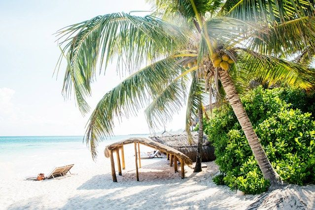 High tail it for some winter sun in the best child-friendly boltholes, from Mexico to the Maldives