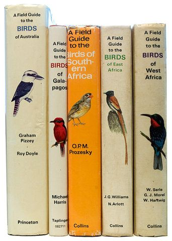 Field guides about birds.