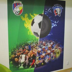 Tapeta FC Viktoria a HC Škoda Plzeň
