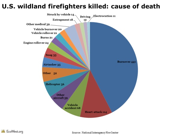 U.S. wildland firefighters killed: cause of death   http://www.ecowest.org/2013/06/11/a-century-of-wildland-firefighter-fatalities/