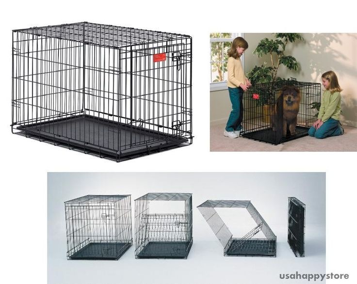 MidWest Folding Dog Crate Kennel 36 Inch Metal Collapsible Pet Portable Training #MidWestHomesforPets