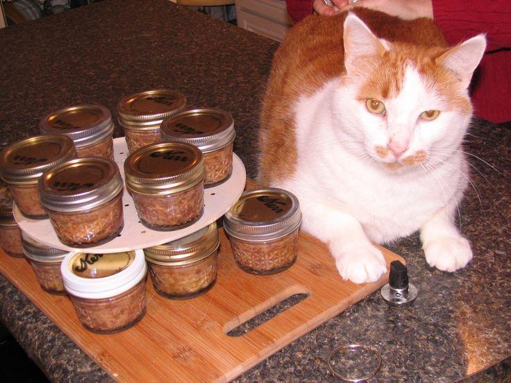 Ich habe heute hausgemachtes Katzenfutter in Dosen gemacht. Yummers! Während wir die CSA-Hühner aßen … – Homemade Cat Food Recipes