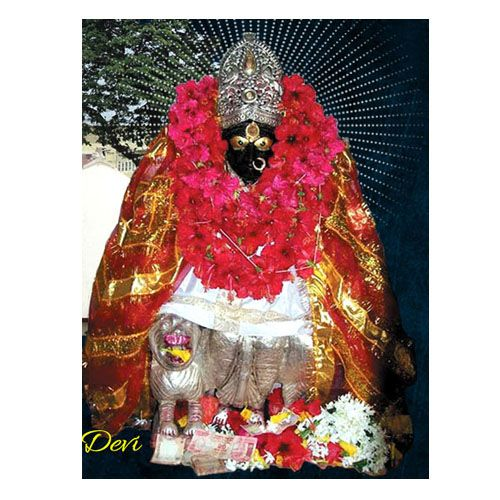 You can now book a puja and Book vindhyavasini temple prasad,at ideal price on Religiouskart.com