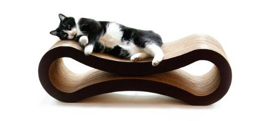 Walnut Cat Litter A Good Choice