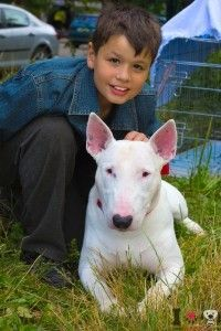 Las 10 mejores razas de perros para convivir con niños:  http://www.razasdeperros.com/las-mejores-razas-de-perros-para-convivir-con-ninos/