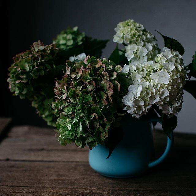 My favourite flowers. Happy Wednesday everyone! #dsfloral #kimbrifarm #localislovelyworkshop #loveflowers #latergram