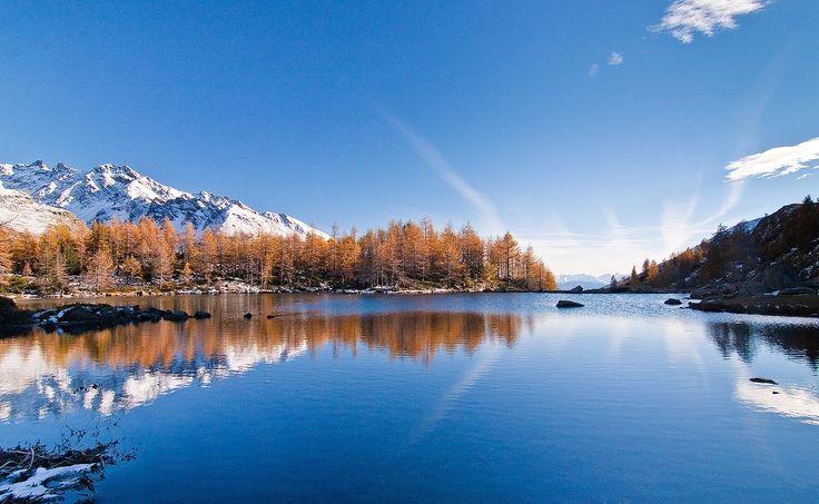 Il lago delle Acque Sparse in val Grosina con i larici e le cime specchiate #valgrosina #valtellina